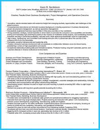 The Best Resume by Marvelous Things To Write Best Business Development Manager Resume