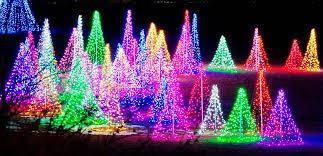 hudson gardens christmas lights christmas at hudson gardens in littleton the world is raw