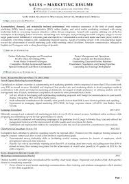 Sample Resume For Accounting Manager by Resume Samples For Sales And Marketing Jobs
