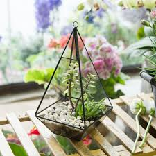 compare prices on hanging plant indoor online shopping buy low