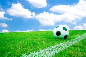 turf stock photos royalty free turf images and pictures