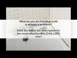 how to get rid of black mold in bathroom youtube