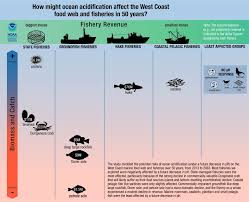 ocean acidification expected to hit west coast dungeness crab