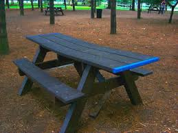 tables in central park picnics in central park
