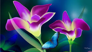 tropical flowers on wallpaperget com