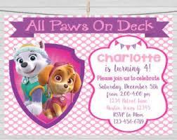 pups paw patrol skye u0026 everest 3st birthday party pack 52pc