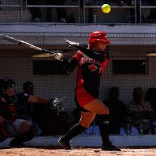 pitch bats fast pitch vs pitch bats healthy living