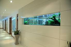 wall aquarium the aquarium s sleek lines follow the wall panelling to give a