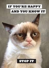 Grumpy Cat Snow Meme - drawn grumpy cat sick pencil and in color drawn grumpy cat sick