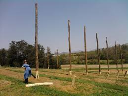 construction of the research hop yard has begun nc state