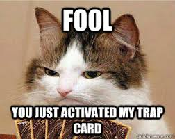 You Ve Activated My Trap Card Meme - fool you just activated my trap card yugi cat quickmeme