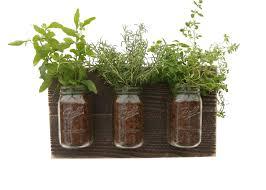 reclaimed wood herb planter dark wood hanging planter indoor