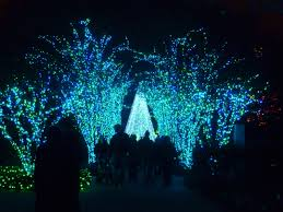 Botanical Gardens Christmas Lights by Garden Lights Holiday Nights The Accidental Peach