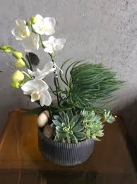succulent planter succulent planter with orchid in san francisco ca seti flowers