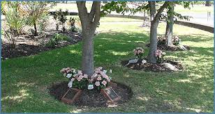 cremation tree melbourne cremation services