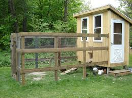 how much did it cost for you to build your own coop backyard