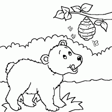 a drawing of a bear and honey animals coloring to print