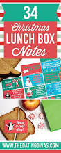 100 holiday themed lunch box notes