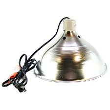 Zoo Med Lights by Reptile Domes U0026 Clamp Lamps Shop Petmountain Online For All