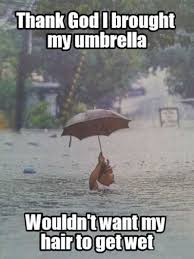 Rainy Day Meme - 17 best ideas about rain humor on pinterest rain jokes funny