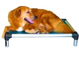 bedroom sweet chew proof dog beds indestructible bed reviews paw