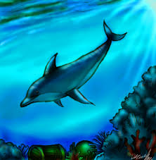 dolphin drawin easy free download clip art free clip art on