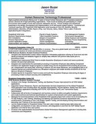 Best Business Analyst Resumes by Systems Analyst Cover Letter Information Technology Cover Letters