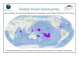Maldives World Map by Shark Sanctuaries Marine Conservation Institute
