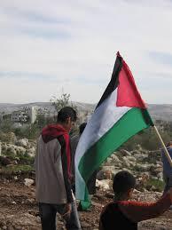 Palistinian Flag File Palestinian Flag Jpg Wikimedia Commons