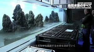 Aquascapes Game Play Online A Series Of Short Documentary Films Featuring The Creation Of