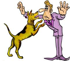 how to keep a dog from jumping on everyone psychology today