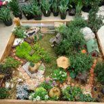 desk rock garden alices with incredible mini inspirations japanese