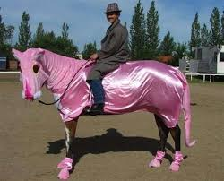 Funny Halloween Animal Costumes 120 Horse Costumes Images Horses Costume