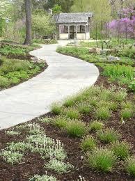 popular landscaping plants darxxidecom