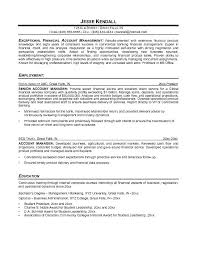 Resume Sample For Account Manager by Account Manager Resume Account Manager Resume Examples Account
