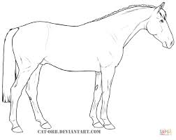 irish sport horse coloring free printable coloring pages