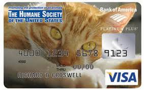 customized debit cards coolest credit card designs cool credit card concept