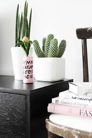 Ideas For Indoor Succulents Design Custom Engraved Signs For Plants That Match The Of These 17