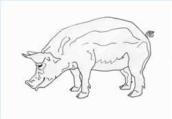 how to draw pigs drawing tutorials u0026 drawing u0026 how to draw pigs