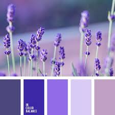 69 best l shades of purple paint colours l images on pinterest