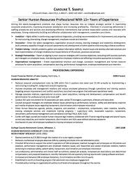 Inroads Resume Template Resume Samples Chicago Expert Booth Template Elementary Ed Sa Saneme