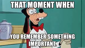 Goofy Meme - that moment when you remember something important goofy wtf