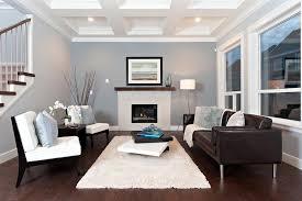 White Shag Rug White Shag Rug Living Room Eclectic With Botanical Themed