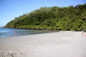 The Beach House Cape Tribulation by Daintree To Cape Tribulation Lose Weight And Gain Health