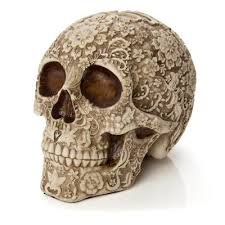 skull decor human skull skull inspired home décor evolution store
