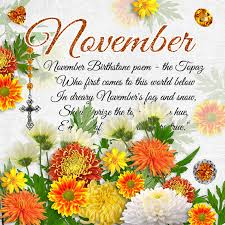 flowers in november what is november birthstone color and flower monthly birthstones