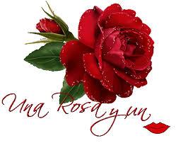 imagenes de feliz inicio de semana con rosas foro colungateam
