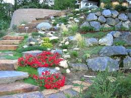 Rock Garden Plants Uk Rock Garden Plants Uk Looking At Plants In Rock Garden Royal