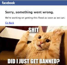 We Re Sorry Meme - facebook back after global outage