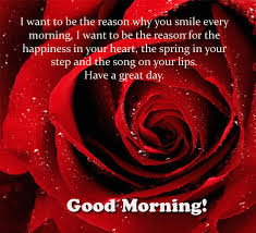 good morning card to you free good morning ecards greeting cards